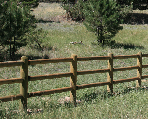 Post And Dowel Fence Materials Rocky Mountain Forest