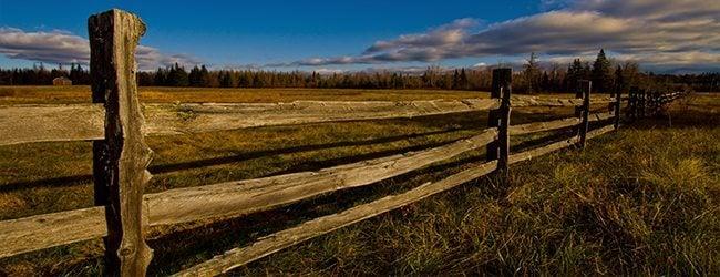 Split Rail Fence en un campo