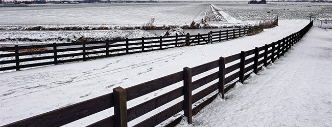 horizontal fence rocky mountain forest products