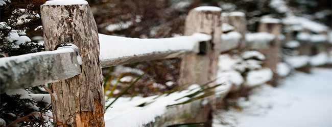5 Tips for Winter Fence Maintenance