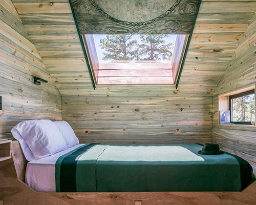 Denver Blue Stain Pine Beetle Kill Lumber Amp Building