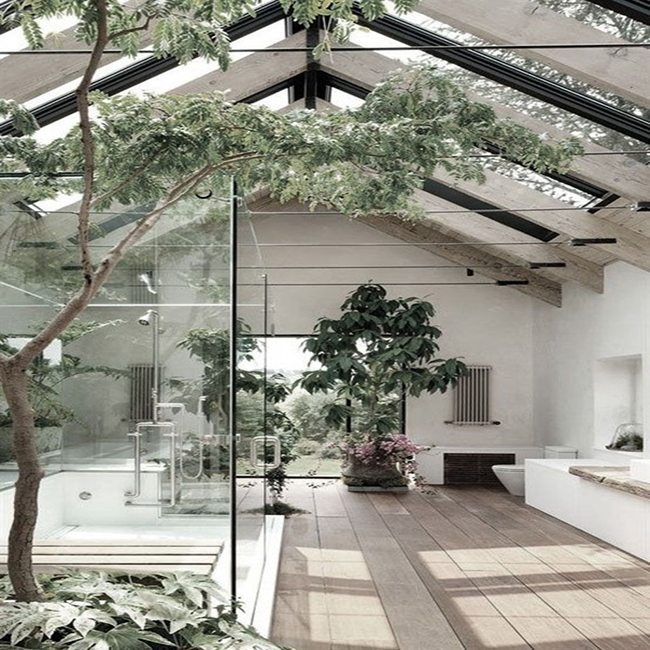 Modern home with indoor greenery