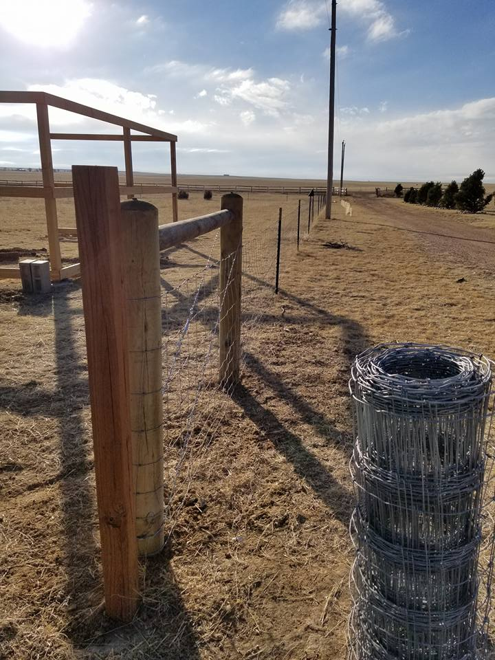 colorado springs fences