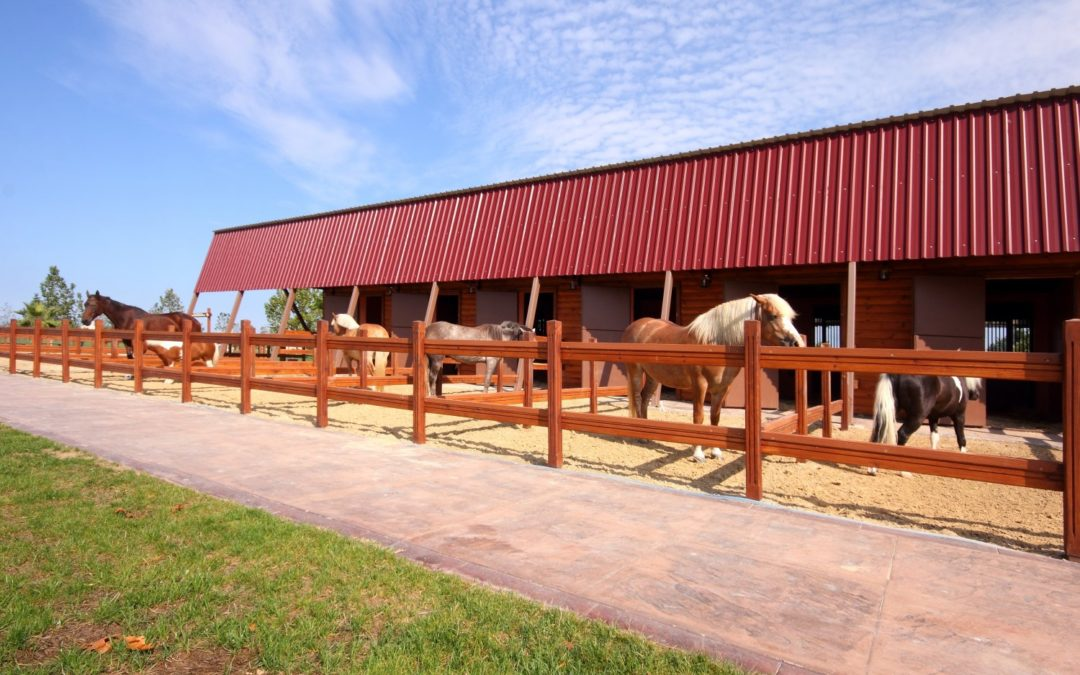 Equestrian Centers Use Split Rail Fence