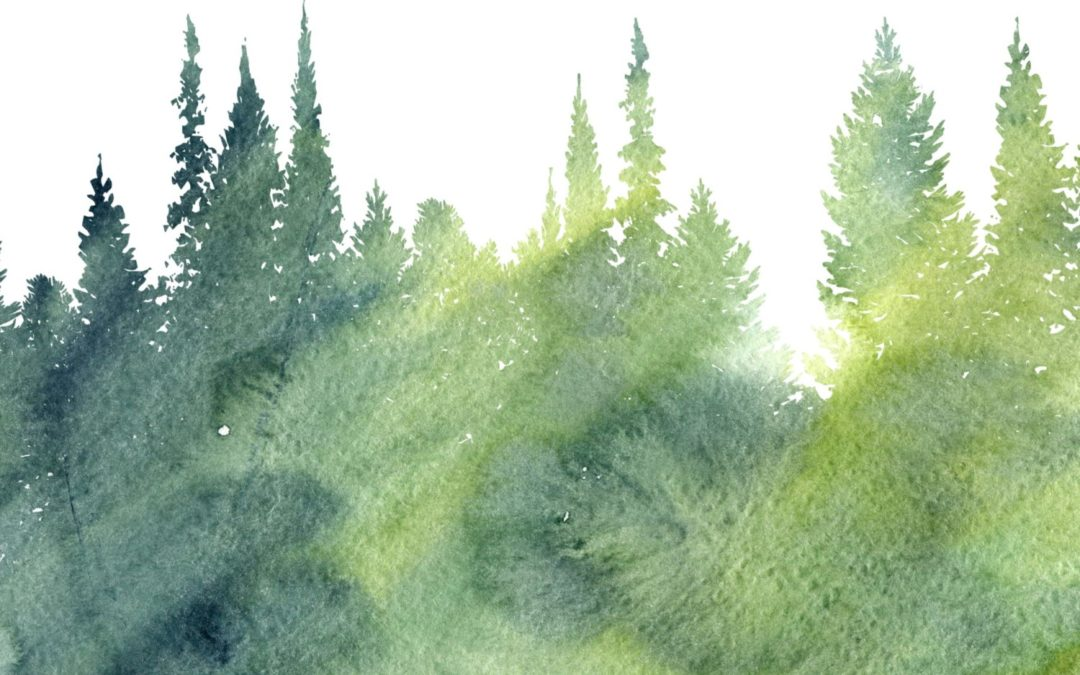 Water Color Painting of Trees