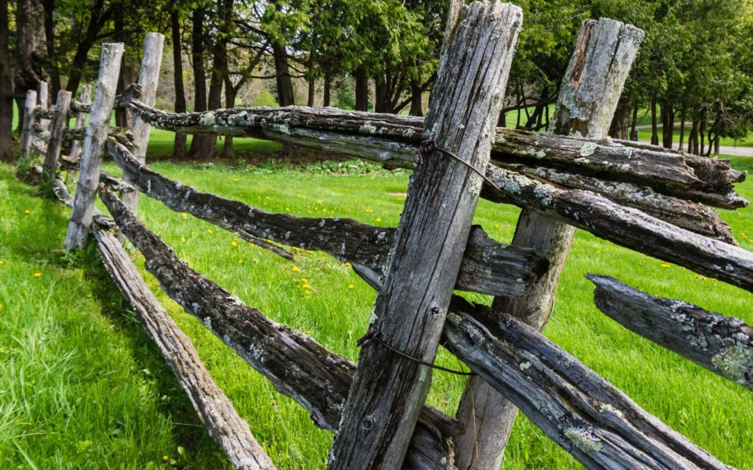 Re-purposing Split Rail Fence
