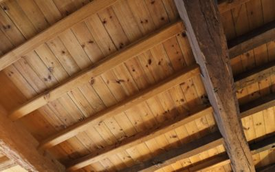 Why You Should Consider A Beetle Kill Ceiling