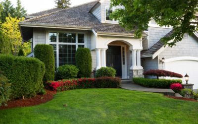 Spring Cleaning Must Do's To Prepare Your Yard