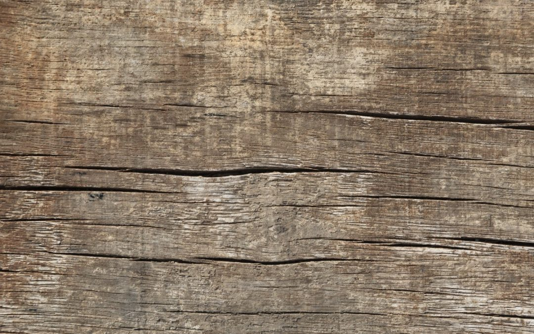 Caring for Your Reclaimed Wood
