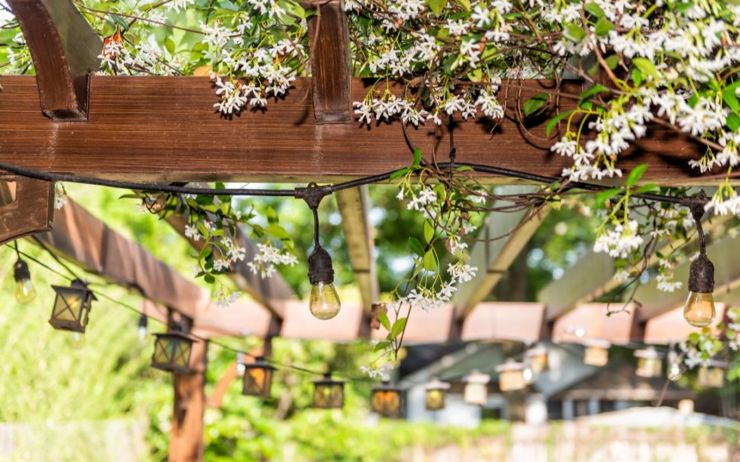 Cedar Projects to Spice Up Your Outdoor Space
