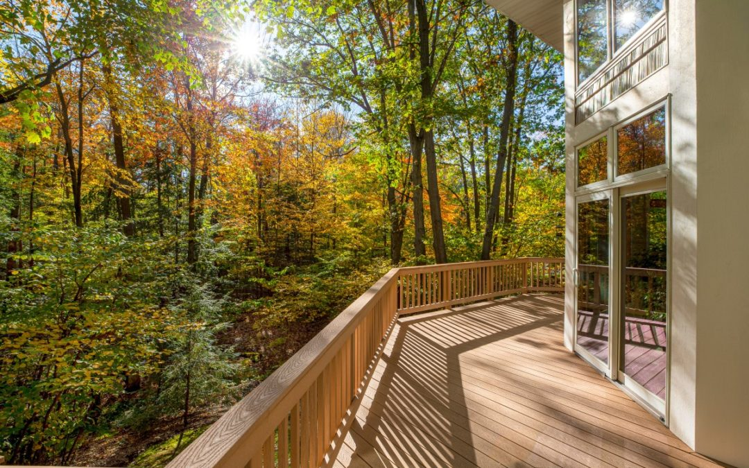 The Best Type of Wood for Your Deck
