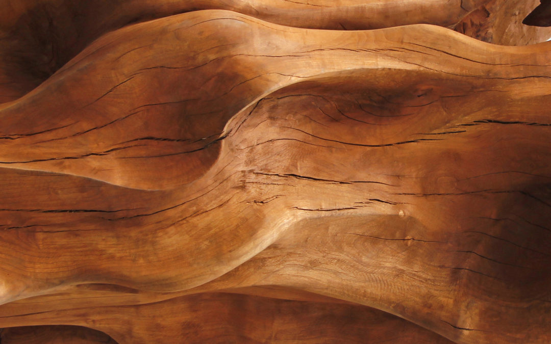 Is Exotic Wood Worth the Price?