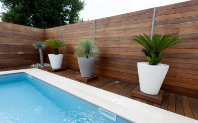 What are the best privacy fencing materials for harsh weather climates?